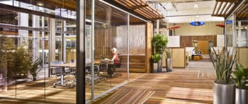 Creating the workplace of the future through biophilic design